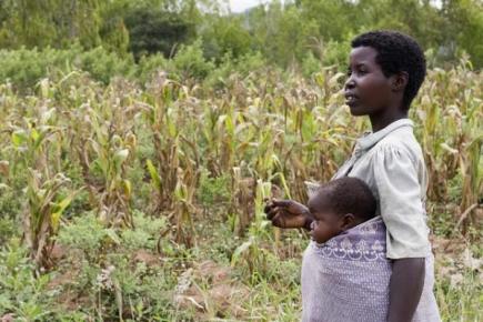 Local Economic Development | Vrouwelijke landbouwers in Malawi ongelijk behandeld